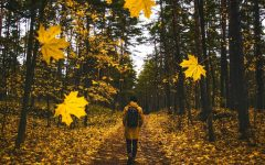 10 Fantastic Fall Activities